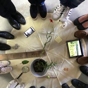 Mein erstes Erdforum* zum Thema Geld - Eindrücke und Ernte