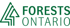 logos__forests-ontario.png