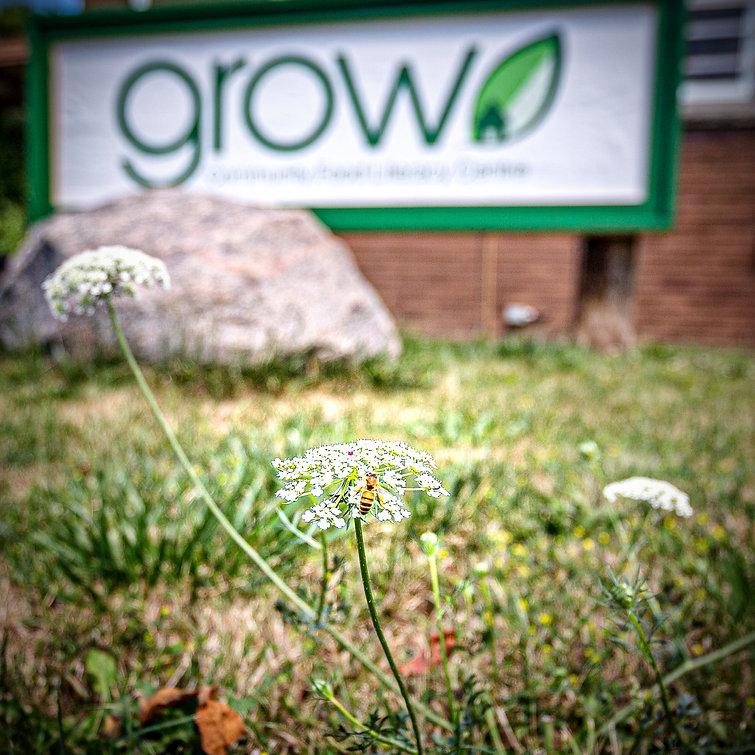 Grow-8_edited.jpg