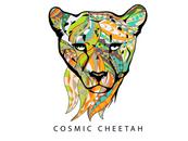 Web Logo - Cosmic Cheetah.png