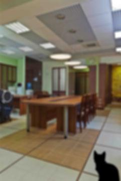 Дизайн-ремонт офиса для 30 сотрудников площадью 140 м2