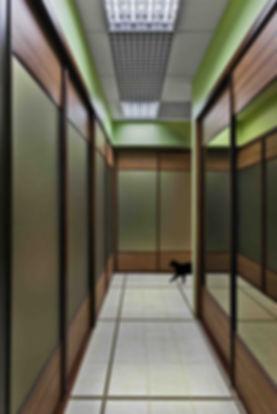 Дизайн-ремонт офиса 140 м2