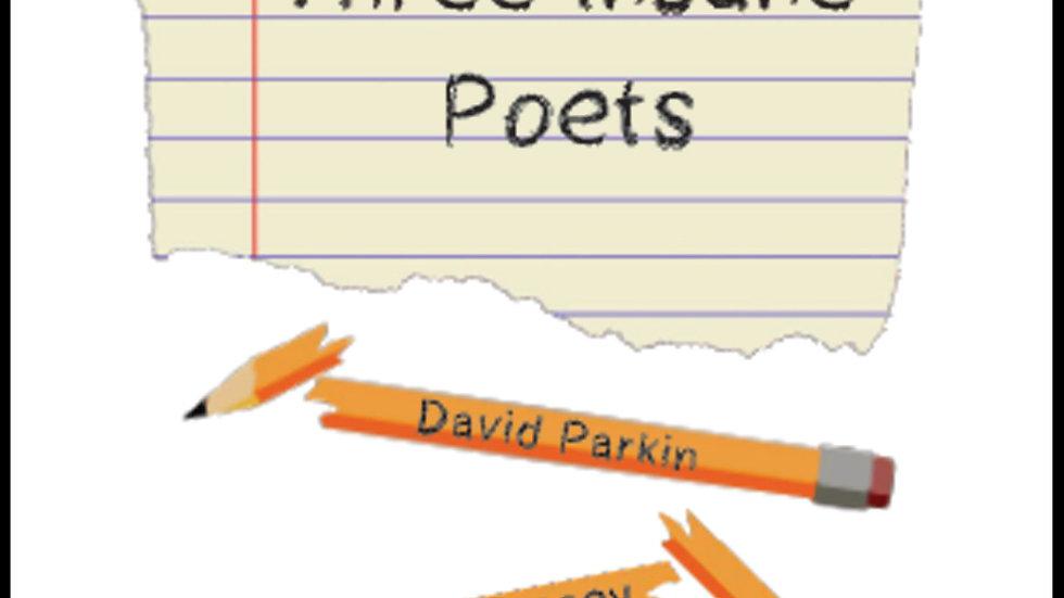 Three Insane Poets by David Rollins, Julie Stacey & David Parkin