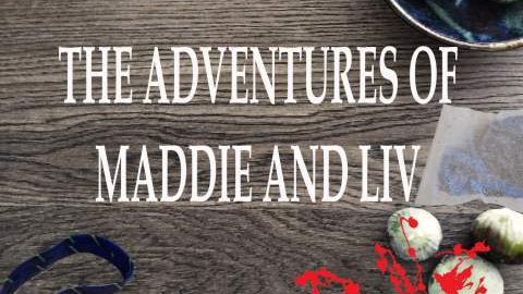 The Adventures of Maddie and Liv: Book One by Daniel J Hainey