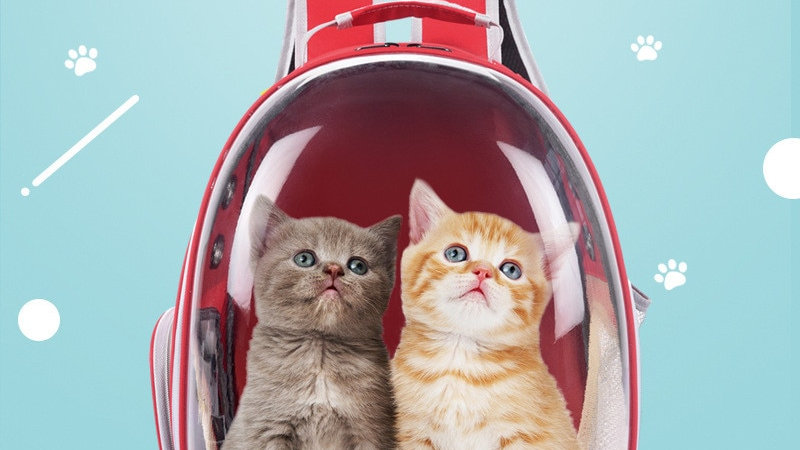 Breathable Pet Carrier Backpack Travel Space Capsule Transport Bags
