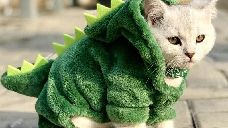 Pet Cat Clothes Funny Dinosaur Costumes Coat Winter Warm Fleece