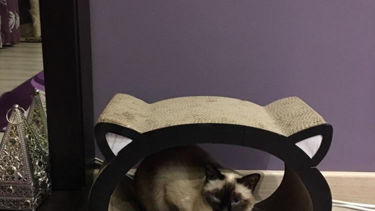 Cat Head-Cat Scratcher Bed Cardboard Paper High Quality