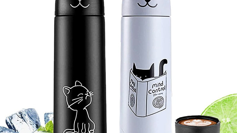 Thermos for Hot Tea Coffee Cold Drinks Insulated Water Bottle Mug