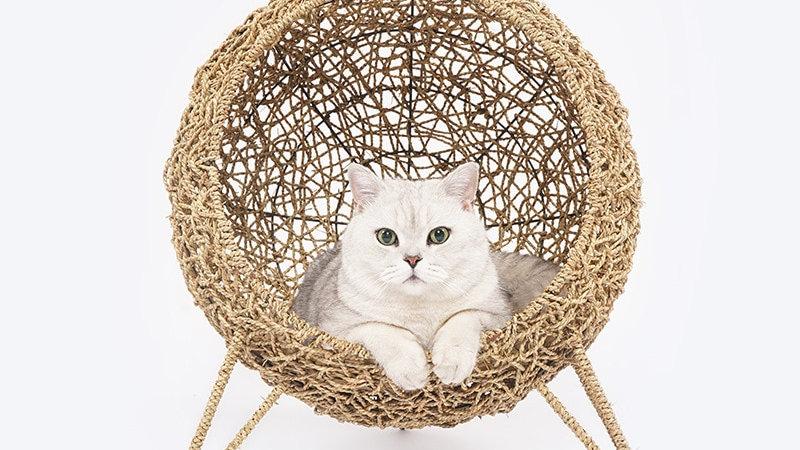 Four Seasons Rattan Cat's Nest