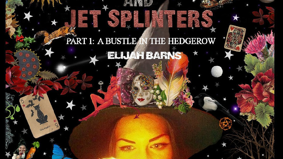A Bustle in the Hedgerow (The Witch and Jet Splinters: Book One by Elijah Barns