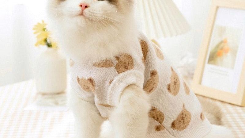 Pet Sweater Clothing Winter Warm