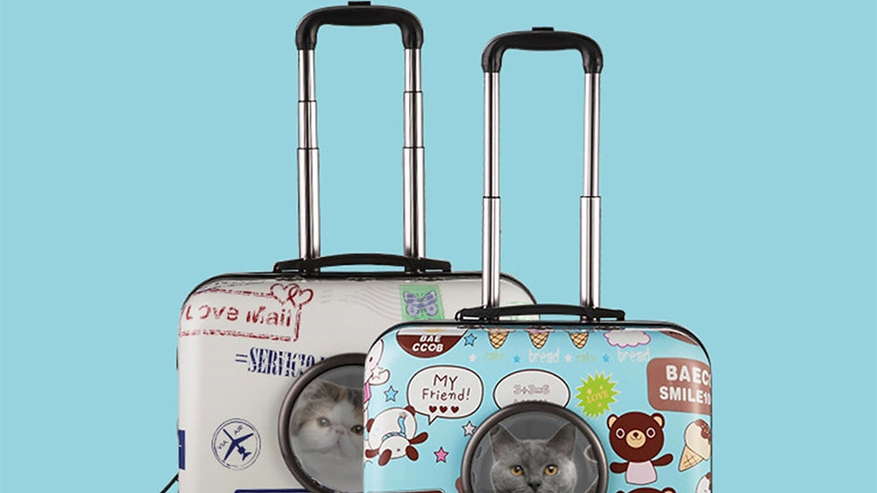 Pet Trolley Case Carrier Portable Breathable Travel Space Bag Airline Approved