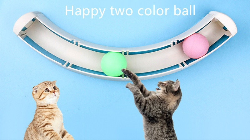 Pet Cat Crazy Ball Disk Interactive Toy