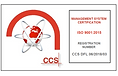 DFL Crest ISO 9001 (002).png