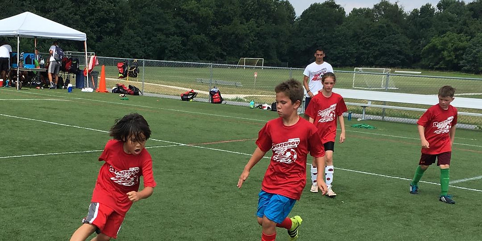 Week 3 Draganov School of Soccer Camp (Half Day)