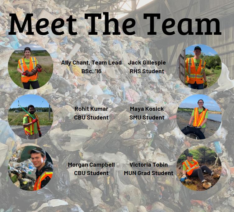 meet the team - Copy.PNG