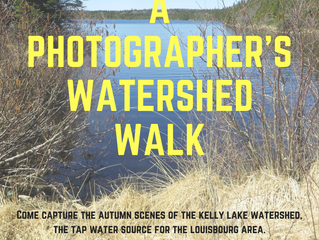 A Photographer's Water Shed Walk