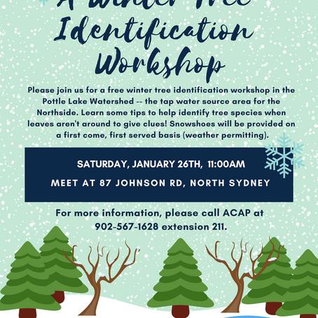 Winter Tree ID Workshop / Watershed Walk
