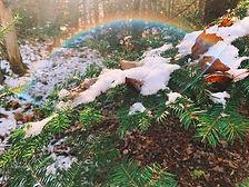 ACAP rainbow photo.jpeg