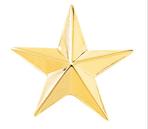 single star pin