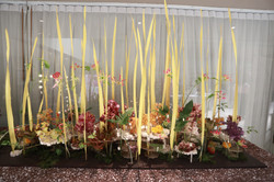 Flower Show Decoration 10
