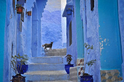 Chefchaouen-the-Ancient-Blue-City-in-Morocco-15