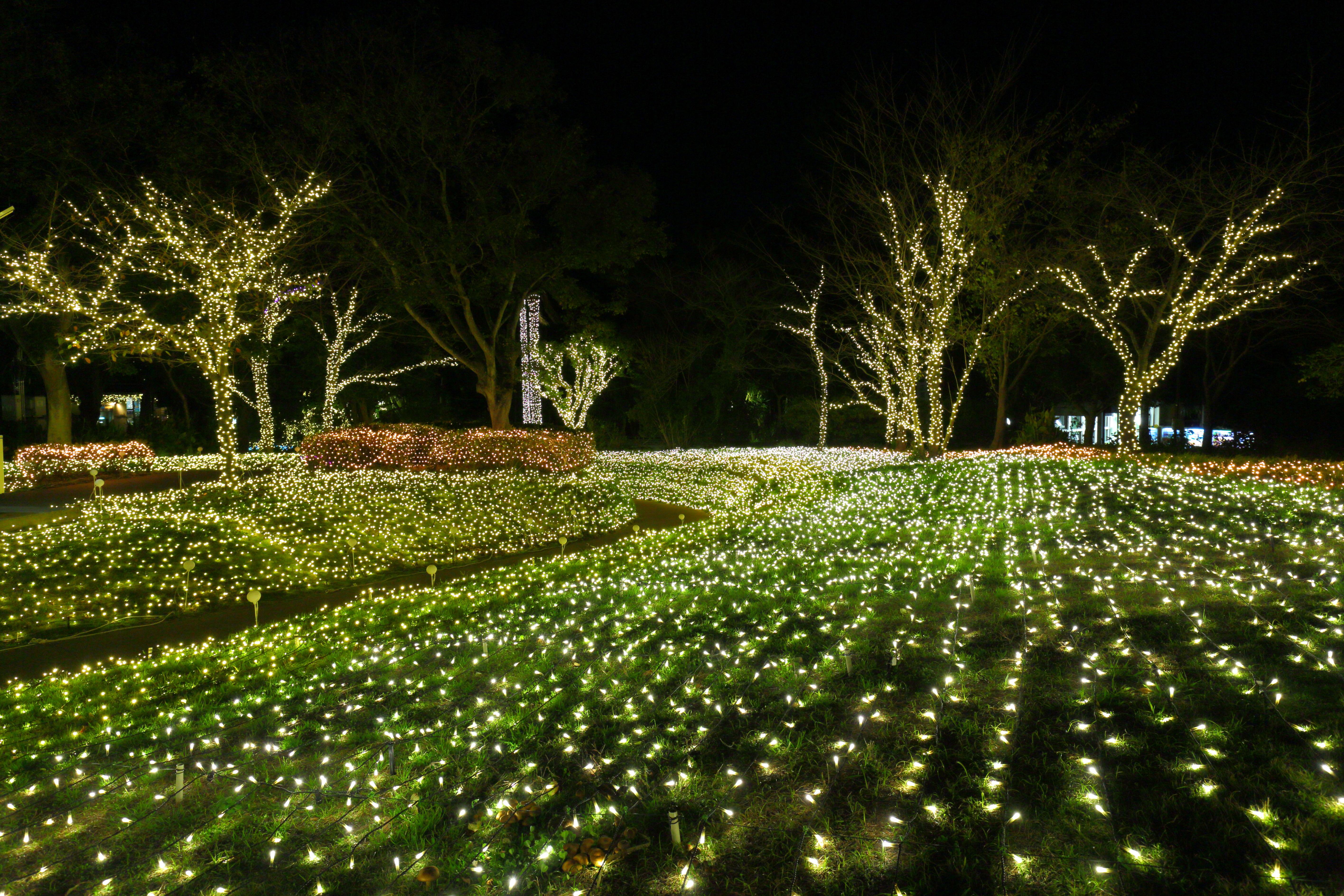 Enoshima hikari michi