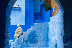 Chefchaouen-the-Ancient-Blue-City-in-Morocco-13