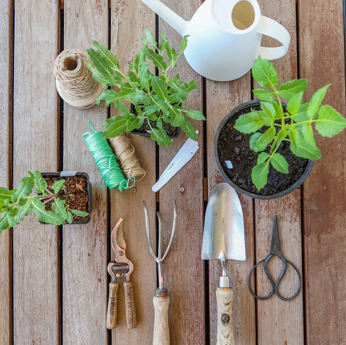 Essential tools for a Cutting Garden