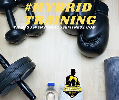 #HYBRID TRAINING.png