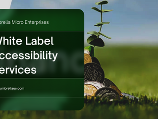 Why website accessibility is your $1m business?