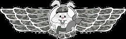 Logo Airsoft Palenzuela