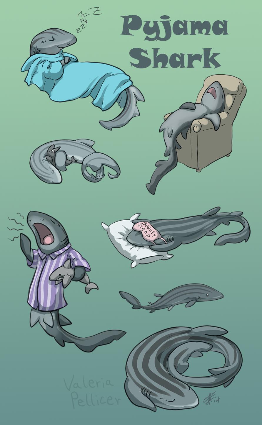 Pyjama Shark