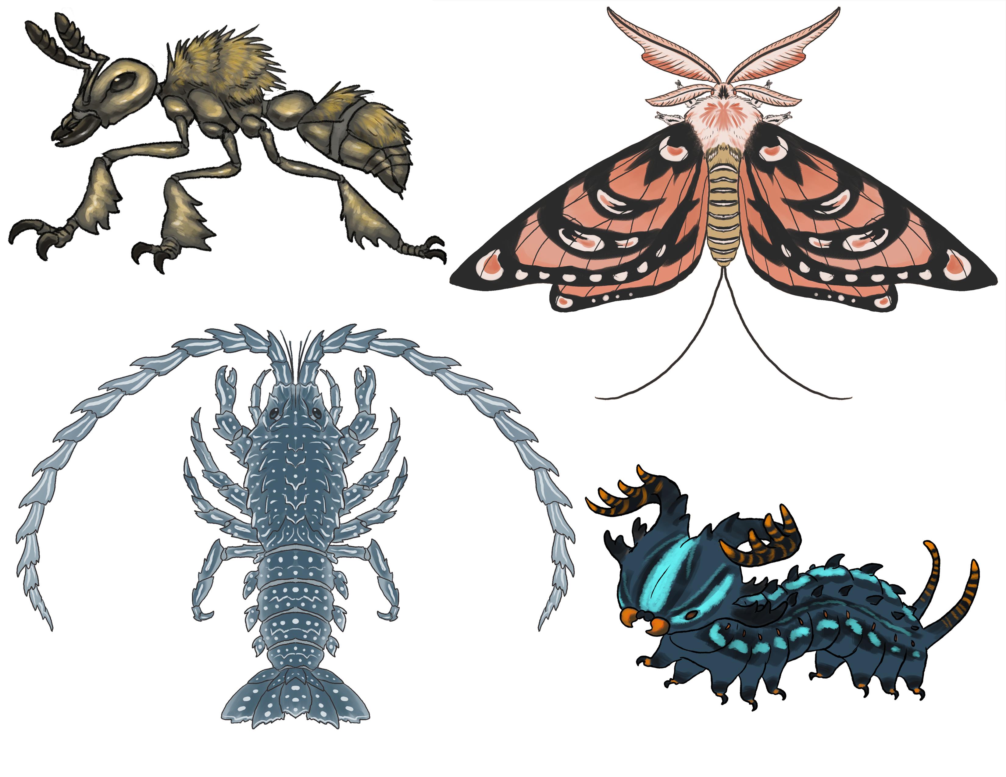 Arthropod Creatures