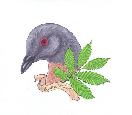 Passenger Pigeon w/ Chestnuts