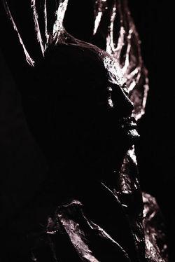 9 sculptures la luz 10.jpg