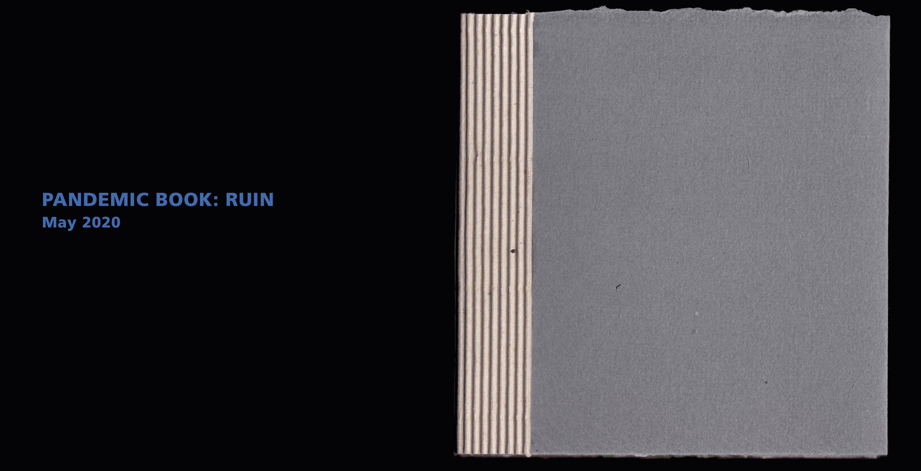 RUIN-cover