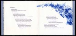 Backyard Poems: Phenomena