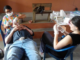 Op-Ed: Health Care in Latin America