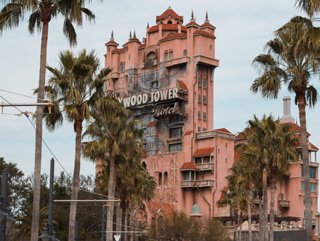 Walt Disney World reopens remaining two theme parks in Orlando