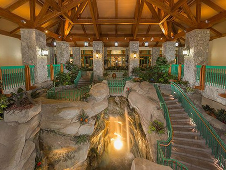 As Walt Disney World plans to reopen, Shades of Green extends closure