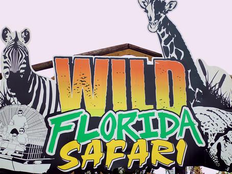 Wild Florida closes all experiences except drive-thru safari