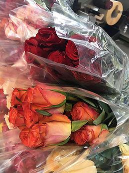 color rose.jpg