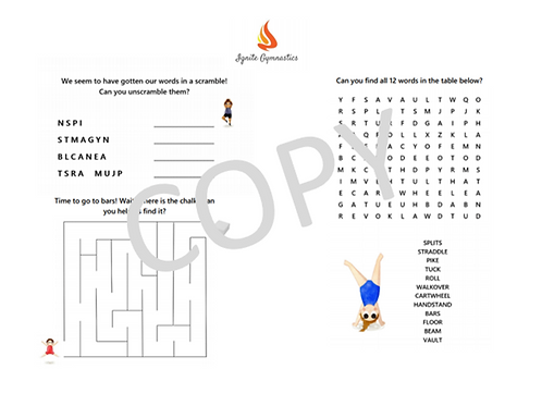 Ignite Gymnastics Activity Challenge