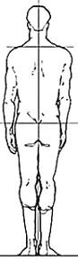 Good Posture Posterior.PNG