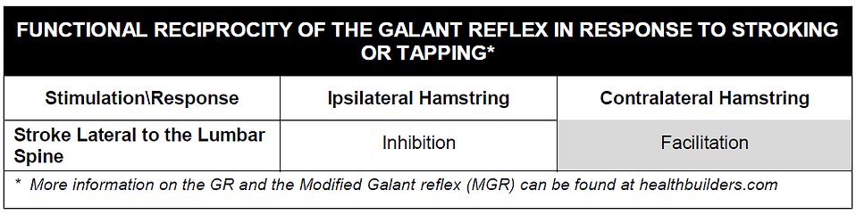 Galant Normals.PNG