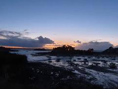 Presqu'île de Nessay
