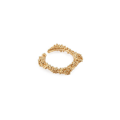 Golden Silver Ilhas Ring