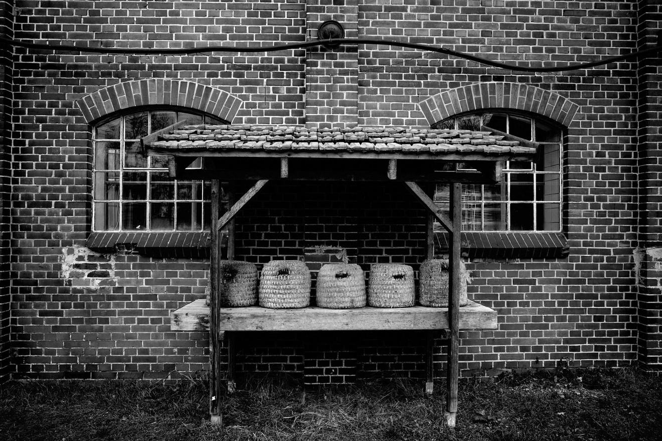 Papierfabrik-WB-20190302-506.jpg