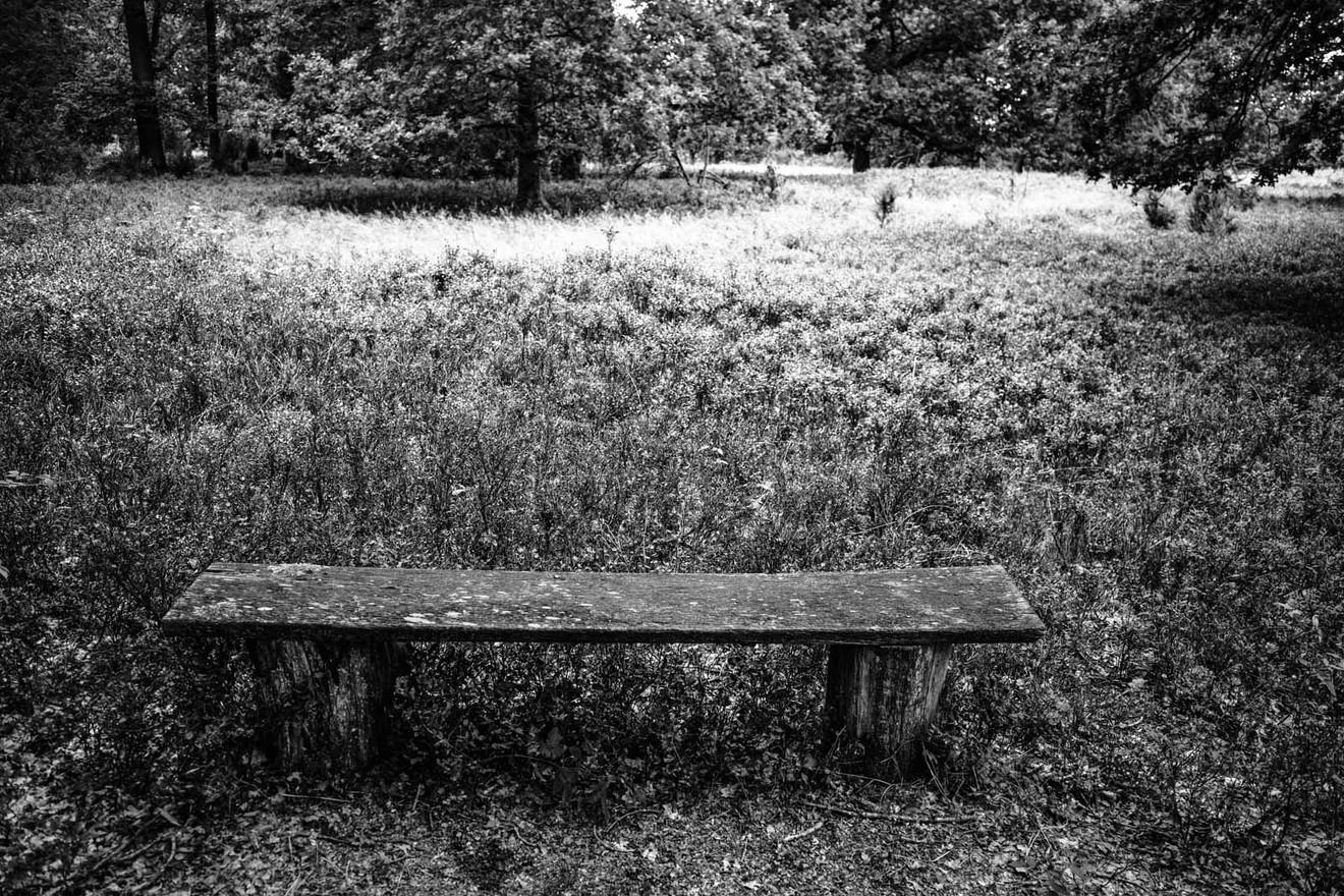 Lueneburger-Heide-WB-20200829-003.jpg